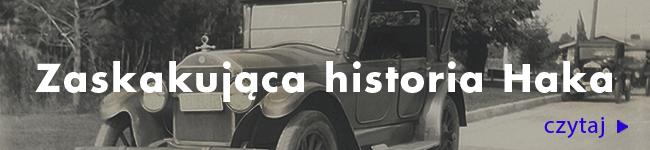 Burzliwa historia haka